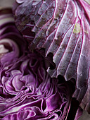Red cabbage (close-up)
