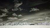 Clouds and field, infrared timelapse