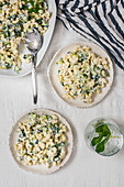 Pasta salad with Greek yogurt, cucumber and fresh mint leaves served in a white bowl and two white plates