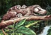 Oligokyphus and young, illustration