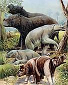 Australian megafauna, illustration