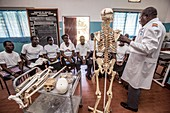 Medical students studying anatomy