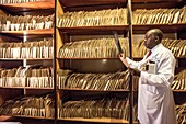 Hospital doctor consulting patient records