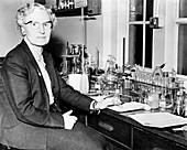 Helen Kemp Porter, British botanist