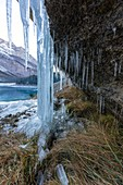 Icicles by a frozen waterfall in the Swiss Alps