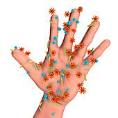 Skin bacteria, illustration