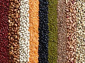Pulses in rows