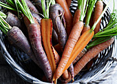 A basket of mixed carrots