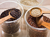 Dried white, red and black quinoa