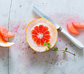Pink grapefruit fillets