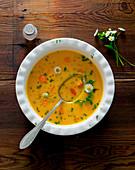 Carrot soup with garden herbs
