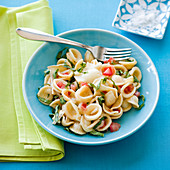 Orecchiette pasta salad with tomatoes and basil
