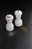 A salt shaker and a pepper mill