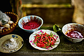 Plates of chillis and chilli pastes (Thailand)
