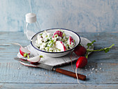 Cottage cheese with radishes and spring onions