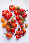 Plum tomatoes, beefsteak tomatoes, cherry tomatoes and vine tomatoes