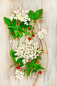 Wild strawberries and leaves with elderflower umbels on a wooden surface