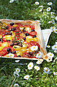 Tomato and goat cheese quiche with olives for a picnic