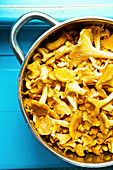 Fresh chanterelles in a saucepan