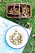 Walnuts on a plate and in a basket in an Autumnal garden