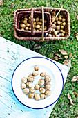 Walnüsse auf Teller und im Korb im herbstlichen Garten