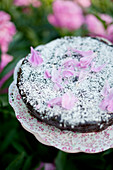 Chocolate cake decorated with grated coconut and petals