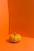 An orange pumpkin on an orange surface