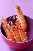 Prawns in a purple bowl