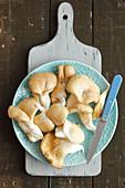 Frische Austernpilze auf Teller mit Messer