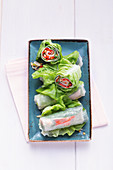 Vegetable wraps with turkey breast and cream cheese