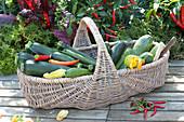 Korb mit frisch geernteten Zucchini und Peperoni, Chili