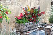 Korb-Kasten mit Kräutern und Gemüse