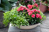 Schüssel mit Kräutern und essbaren Blüten