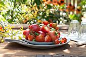 Frisch gepflückte Lycopersicon ( Tomaten ) auf Teller