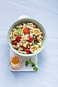 Pasta and chickpea salad with turkey breast