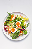 A colourful mixed leaf salad with eggs and apple
