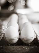 weiße Eier in durchsichtigem Eierbehälter (Nahaufnahme)