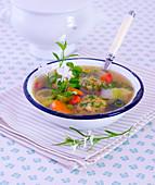 Summer vegetable soup with dumplings