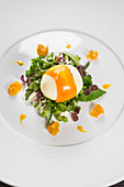 A poached egg wrapped in carrots with garden herbs and mango