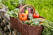 A basket of fresh vegetables on a stone wall