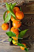 Mandarinen mit Blättern in Holzkiste