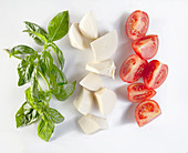 Basil, Mozzarella and tomato wedges (shaped as Italian Flag)