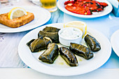 Dolmades serviert mit Tzatziki-Sauce (Griechenland)