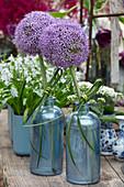 Blüten von Zierlauch 'Globemaster' (Allium) mit Schleifen aus Gras in Flaschen gestellt