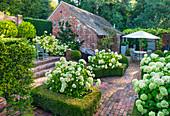 Formaler Garten mit Hortensie 'Annabelle' in Buchs-Hecken