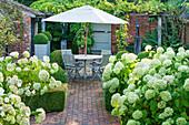 Sitzgruppe unterm Sonnenschirm im formalen Garten mit Hortensie 'Annabelle'