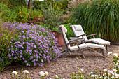 Liegestühle auf Kies-Terrasse am Beet mit Frikarts-Aster (Aster frikartii) und Chinaschilf