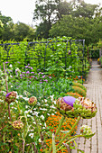 Bauerngarten mit Sommerblumen und Gemüse