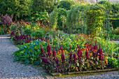 Garten mit Gemüse und Sommerblumen