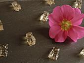 Prosecco-Gummibärchen mit Blüte